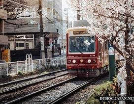 Chuyến tàu chỉ phục vụ duy nhất một hành khách mỗi ngày ở Nhật Bản