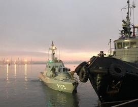 Thế giới nói gì về vụ Nga bắt tàu Ukraine?