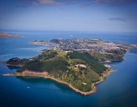 Các hòn đảo của New Zealand đang từ từ xích lại gần nhau