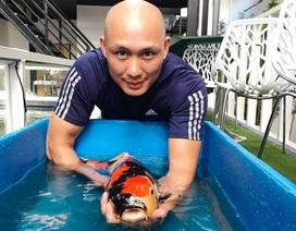 Chàng trai phố núi bỏ hàng tỷ đồng để nuôi cá nghìn USD