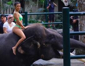 Chị em Kardashian cưỡi voi, khám phá Bali