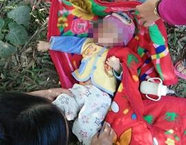 Bé gái 15 tháng tuổi bị bỏ rơi ở bụi tre ven đường