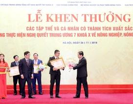 Tập đoàn TH nhận bằng khen về thành tích xuất sắc trong lĩnh vực Tam nông
