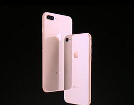 Apple bán iPhone 8/8 Plus giá 12 triệu đồng, lộ ảnh thực tế Asus ZenFone 6