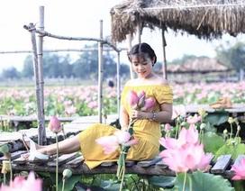 """Giới trẻ thoả sức """"check in"""" hồ sen ở vùng cát trắng Ninh Thuận"""
