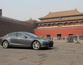 Ngấm đòn chiến tranh thương mại Mỹ - Trung, doanh số Tesla sụt giảm thảm hại