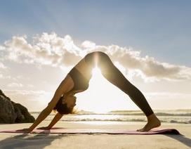 Vì sao Yoga giúp bạn nhận biết biểu hiện xấu về sức khỏe sớm hơn?