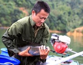 Đổi đời nhờ nuôi những loài cá đặc sản trên hồ Hủa Na