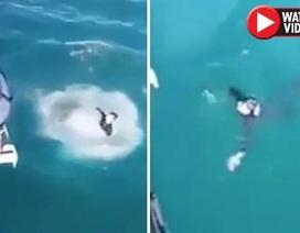 Video: Thanh niên nhảy xuống nước và hối hận ngay lập tức