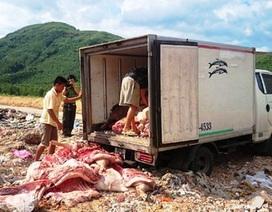 """Kiểm soát chặt chẽ thịt heo """"bẩn"""" tuồn vào thị trường dịp Tết"""