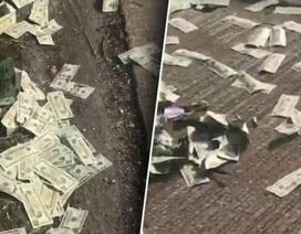 """""""Cơn mưa"""" tiền kỳ lạ đột ngột rơi xuống làm đường cao tốc tại Đức phải đóng cửa"""
