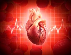 Khi nào rối loạn nhịp tim cần đến bác sỹ?