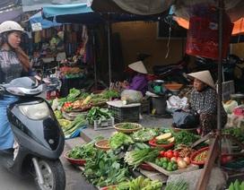 Hội An: Rau xanh tăng giá gấp 2-3 lần sau lũ