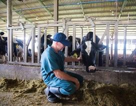 Chuyên gia quốc tế đánh giá cao chất lượng sữa A2 của TH true MILK