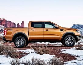 Ford phát triển mẫu xe bán tải mới nhỏ hơn Ranger
