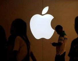 """Tesla bị Apple """"nẫng"""" mất một giám đốc thiết kế"""