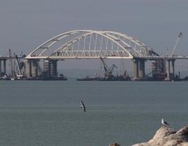 """Nga phản bác nghị quyết của Liên Hợp Quốc chỉ trích """"quân sự hóa Crimea"""""""