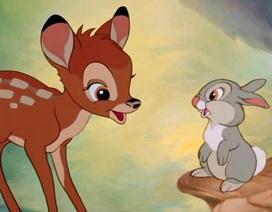 Tòa buộc thợ săn hươu trộm xem phim hoạt hình để hối cải