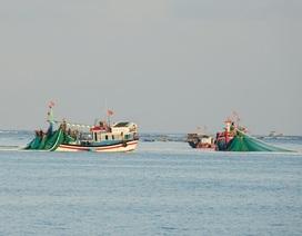 Quảng Ngãi: Ngư dân chuyển nghề vì sản lượng hải sản gần bờ sụt giảm