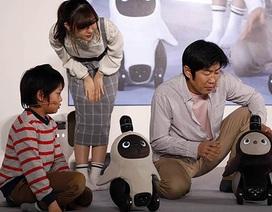 Robot ứng dụng AI mới của Nhật Bản giúp chủ nhân hạnh phúc hơn