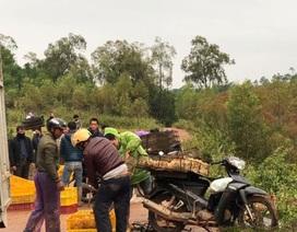 Bộ trưởng Bộ Nông nghiệp cảnh báo nguy cơ cao xâm nhiễm các dịch bệnh nguy hiểm dịp Tết