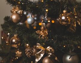 """Khóc cười với… """"hồn ma"""" trong đêm Giáng sinh (kỳ 4)"""