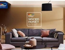 """""""Đón nắng vào nhà""""cùng Nâu mật nồng - Spiced Honey"""