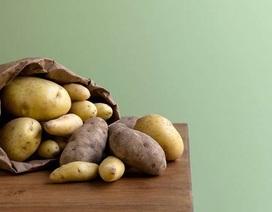 Đồ ăn chứa tinh bột làm giảm phản ứng tự miễn ở người bị lupus