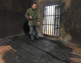 Nghệ An: Hàng trăm cây ăn quả bị chặt phá, nhà cửa bị đốt, người dân kêu cứu!