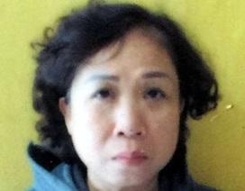 Hà Nội: Nữ giám đốc lừa bán công ty cho nhiều người, chiếm đoạt tiền tỷ