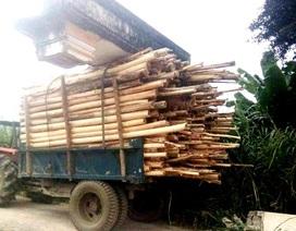 """Xe gỗ """"chở"""" cả... cổng làng chạy trên đường"""
