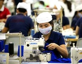Quảng Ninh: Đề nghị điều tra, truy tố 7 doanh nghiệp nợ đọng BHXH