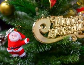 Phố Hàng Mã tràn ngập không khí Noel