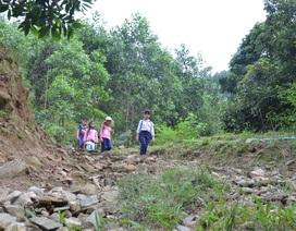Quảng Ngãi: Không có đường, học sinh mất nửa ngày băng rừng đến trường