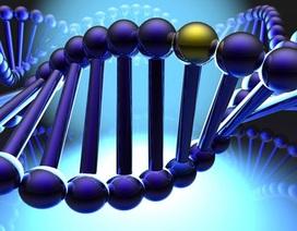 Nghiên cứu giải mã gen người Việt được đầu tư 4,5 triệu đô la Mỹ