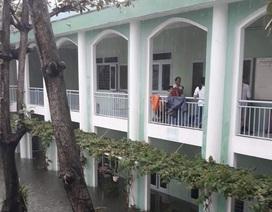 Đà Nẵng thông báo khẩn cho học sinh toàn thành phố nghỉ học ngày mai
