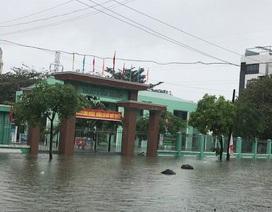 Quảng Trị: Chủ động cho học sinh nghỉ học để đảm bảo an toàn nếu mưa lớn