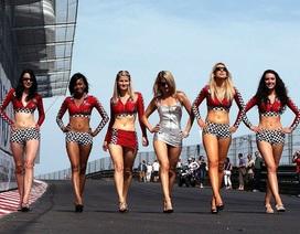 """F1 """"cấm cửa"""" người mẫu trên đường đua"""