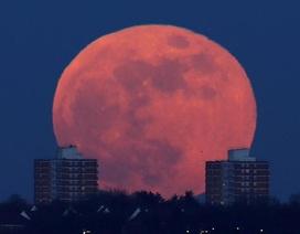 """Chiêm ngưỡng hình ảnh trăng """"máu"""" kỳ thú khắp thế giới"""