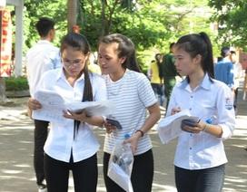 Bị tước quyền tuyển sinh nếu không công bố tỉ lệ sinh viên có việc làm