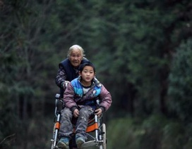 Cụ bà 76 tuổi hàng ngày đẩy xe lăn 15 dặm đưa cháu đi học suốt 4 năm