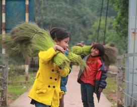 """""""Lộc rừng"""" mang niềm vui Tết cho học sinh miền núi"""