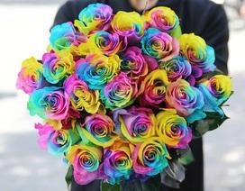 """Hoa hồng """"thét"""" giá gấp 3 lần ngày thường, vẫn cháy hàng dịp Valentine"""