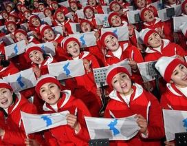 Vì sao cờ của đội cổ vũ Triều Tiên gây tranh cãi tại Thế vận hội?