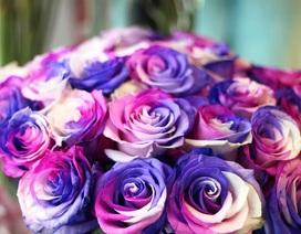 """Chi 60 triệu đồng mua hoa tặng """"một nửa yêu thương"""" ngày Valentine"""