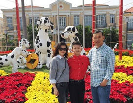 Người dân Đà Nẵng náo nức du xuân sớm