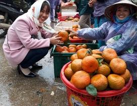 Người trồng cam phấn khởi vì được giá