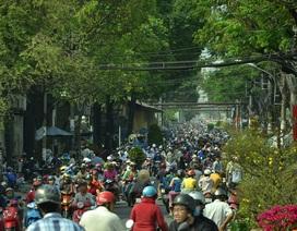 TPHCM: Người dân đổ xô mua hoa trưa 30 Tết, đường phố kẹt cứng
