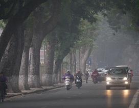 Hà Nội mưa nhỏ rải rác trong ngày đầu năm mới