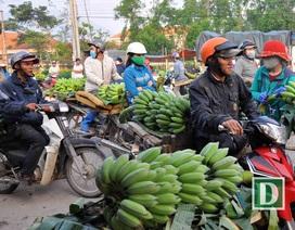 Phiên chợ chuối chỉ họp vào dịp Tết, lớn nhất Nam Trung Bộ